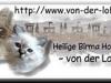banner_loburg